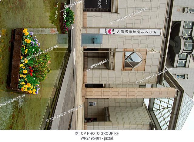 Pick Apples Persimmon Japan