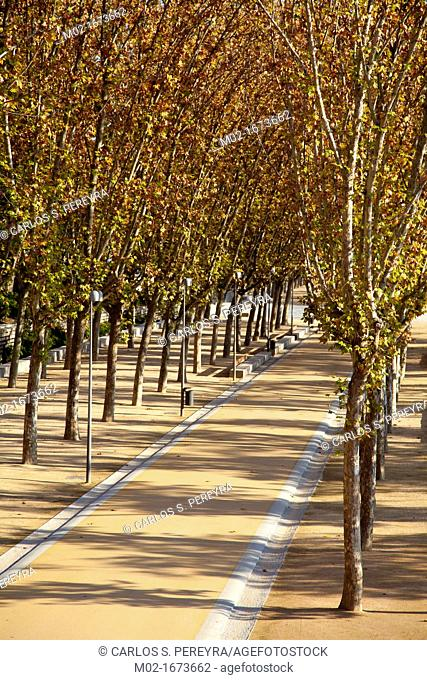 Arganzuela Park in Madrid Rio, Madrid, Spain  Madrid Rio is the last great ecological development in the city