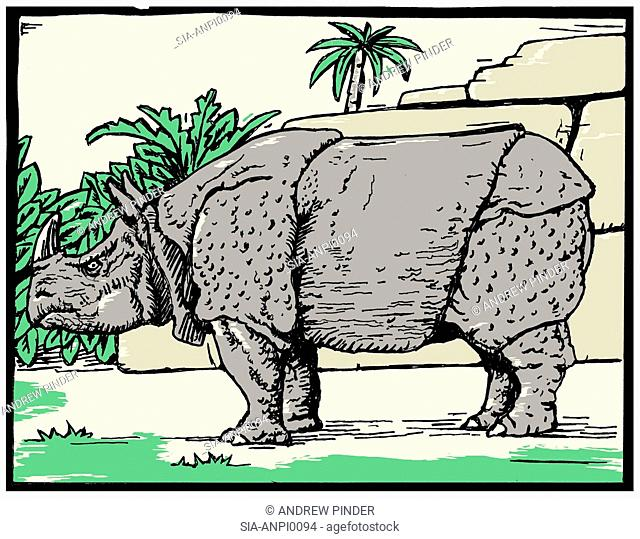 Side view of grey rhinoceros outdoors
