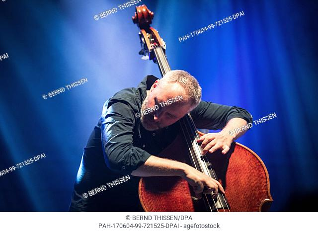 American double bassist Reid Anderson of the alternative jazz trio The Bad Plus performs on stage during the Moers Festival in Moers, Germany, 4 June 2017