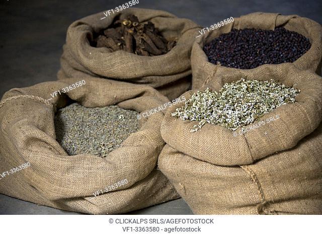 Alpine herbs in burlap sack, ingredients of recipe of liquor Amaro Braulio, Bormio, Sondrio, Valtellina, Lombardy, Italy