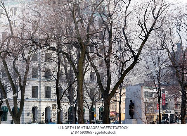 Canada, Quebec, Montreal bare trees and buildings in Dorchester Square