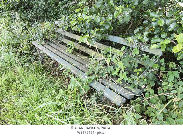 Overgrown bench in Yorkshire, England, United Kingdom