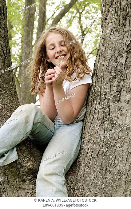 Preteen girl with wavy gold-brown hair and freckles, sitting in tree, in faded jeans and white short-sleeved top, looking at small white wildflower and smiling