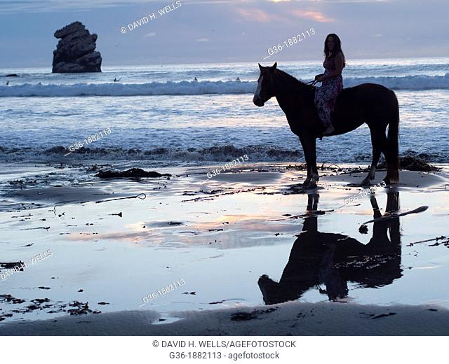 Horses on the beach at sunset in Morro Bay, California