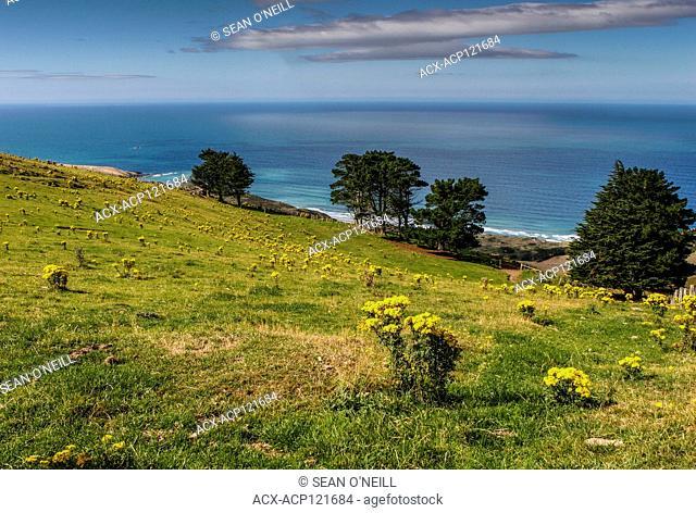 hills and ocean, Otago Peninsula, South Island, New Zealand