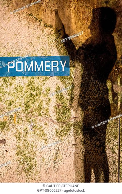 COLLECTION OF THE POMMERY CHAMPAGNES IN REIMS, MARNE (51), CHAMPAGNE-ARDENNE, FRANCE