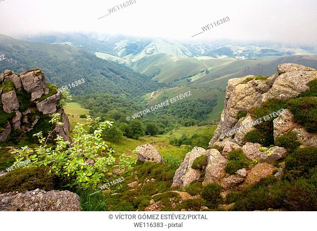 View of Irati Forest, Navarra, Spain