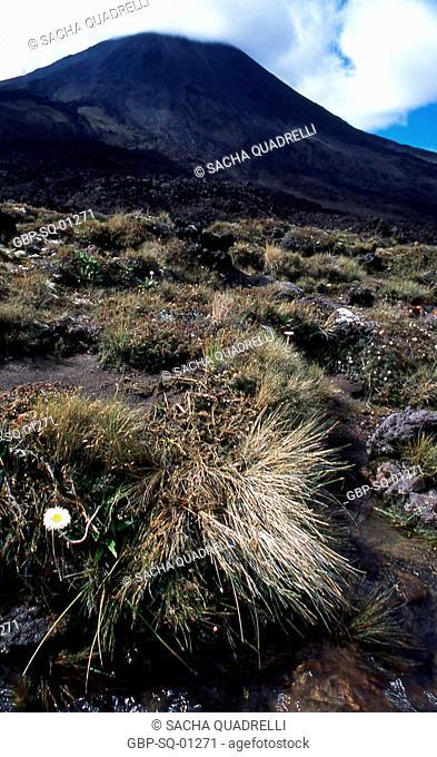 Mt Ngauruhoe, North Island, Tongariro National Park, New Zealand