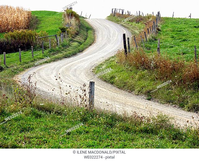 Winding dirt road, Amish life in Millersburg and Sugar Creek, Holmes County. Ohio, USA