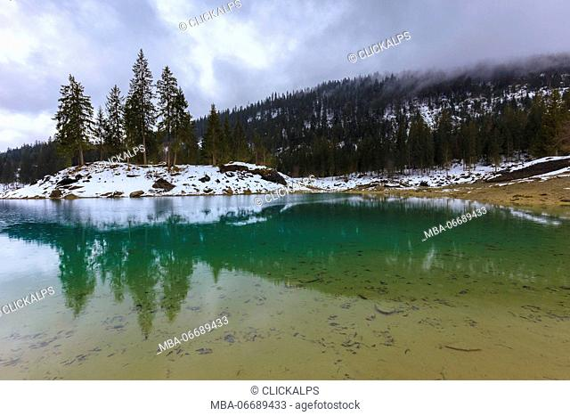 Fir trees are reflected in the lake during a rainy day. Caumasee, Flims, Imboden, Graubunden, Switzerland, Europe