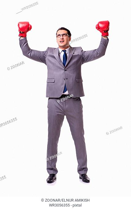 Businessman boxing isolated on the white background