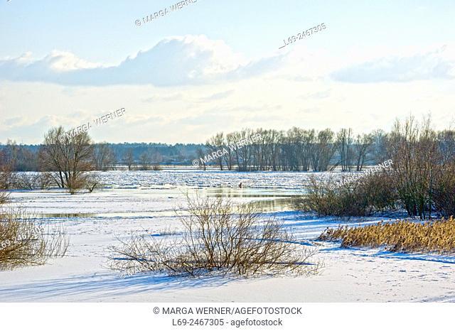 Icedrift on river Elbe in Biosphere reserve ''Elbe River Landscape'', Amt Neuhaus, Lower Saxony, Germany, Europe