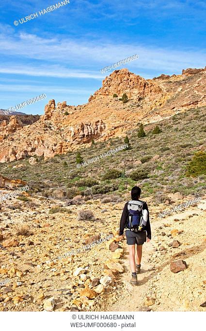 Spain, Canary Islands, Tenerife, Roques de Garcia, Teide National Park, Female hiker in the Caldera de las Canadas