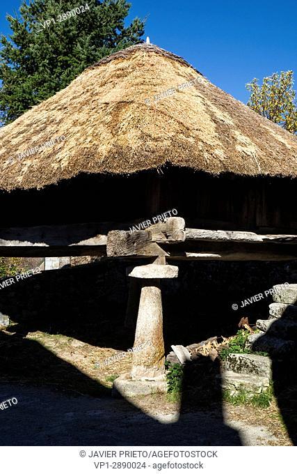 Traditional Horreo with teito in Piornedo de Ancares. The Ancares. Lugo. Galicia. Spain