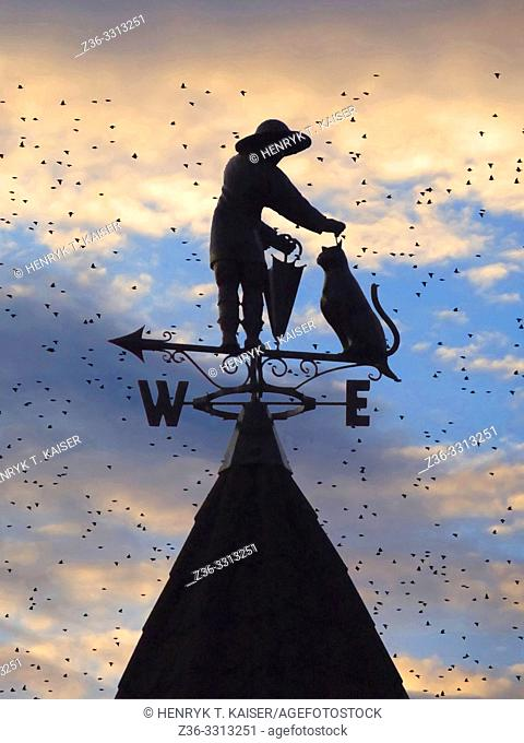 Man with cat as a weather vane on the roof in Truskawiec, Ukraine