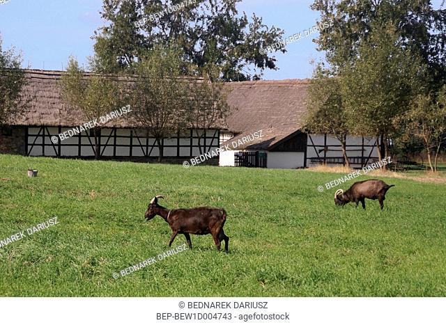 Ethnographic Park in Dziekanowice, Greater Poland Voivodeship, Poland