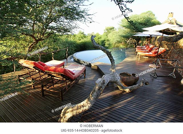 Madikwe, North West, South Africa, Africa