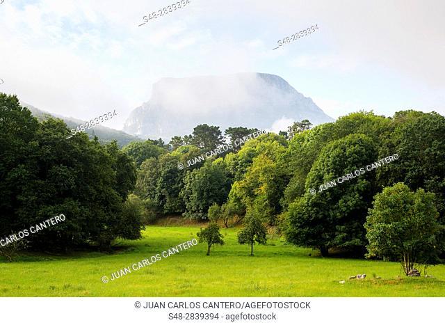 La Mortera mountain (722 meters) from Ramales de la Victoria. Cantabria. Spain. Europe