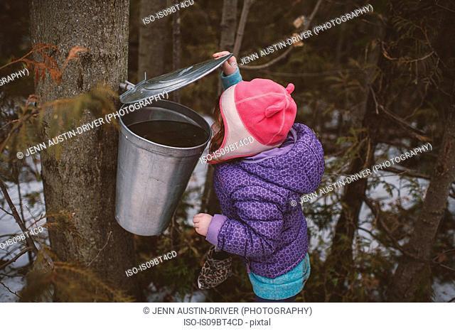 Girl in winter hat peering into forest tree bin