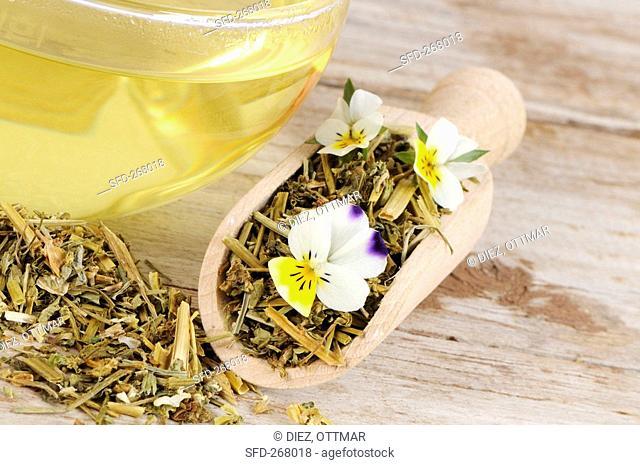 Field pansy tea and tea leaves in scoop
