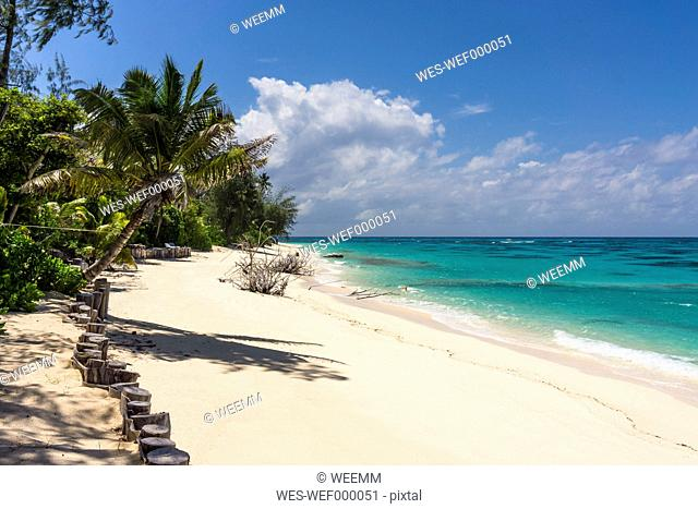 Seychelles, Northern Coral Group, Denis Island, Private beach