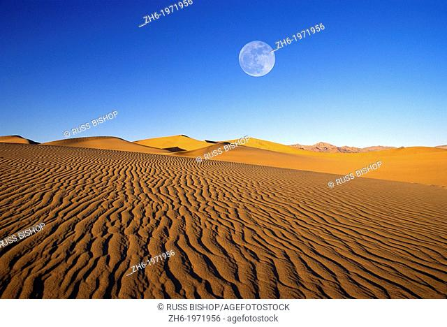 Full moon over evening light on dune patterns on the Mesquite Flat Sand Dunes, Death Valley National Park, California USA