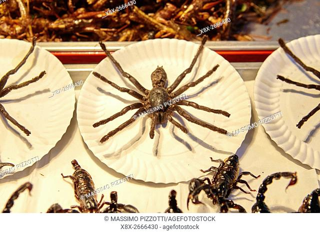 Sales of fried insects in Khao San Road, Bangkok, Thailand