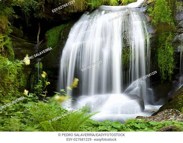 Waterfall in Triberg village, Black Forest, Germany