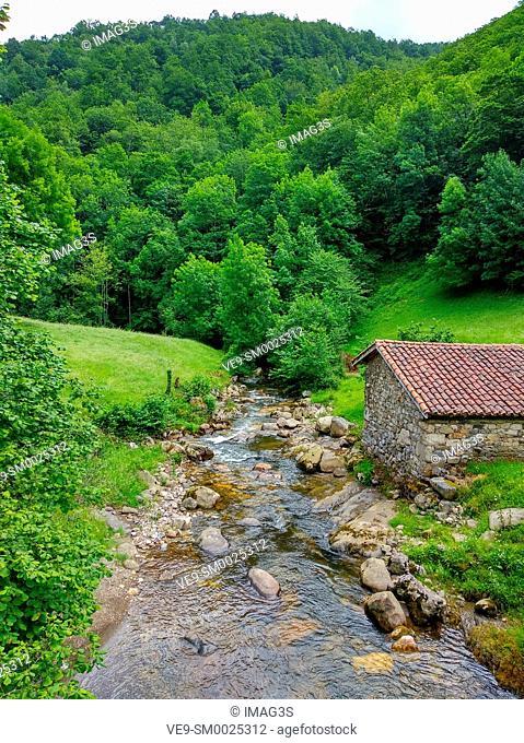 River Alba trail, Redes Nature park and Biosphere Reserve, Sobrescobio municipality, Asturias, Spain