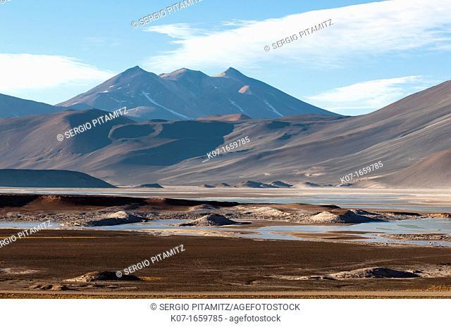 Salar de Talar, Atacama Desert, Chile