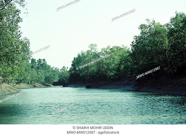 The Sundarban is the world's largest littoral mangrove forest by the Bay of Bengal, which is also a UNESCO World Heritage Site Bangladesh 2004