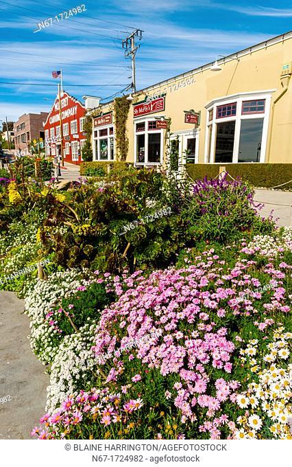 Cannery Row, Monterey, Monterey County, California USA