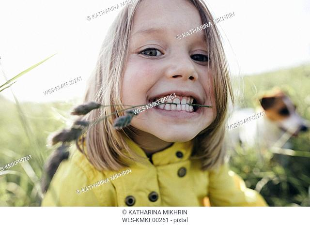 Portrait of little girl on a meadow holding blade of grass with her teeth