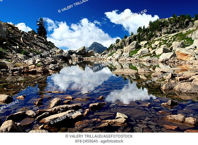 The lac Negre in the Boreon, Mercantour national park, Alpes-Maritimes, France