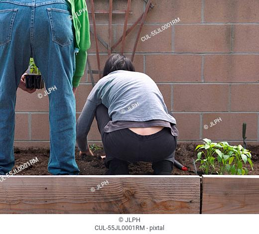 Woman with senior father gardening