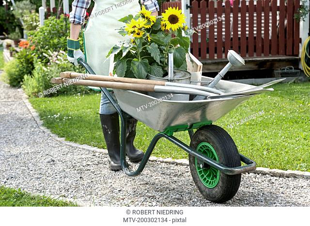 Detail woman pushing wheelbarrow garden