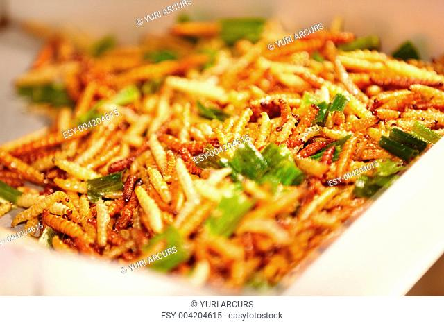 Fried Bamboo worm larvae at a Thai street market