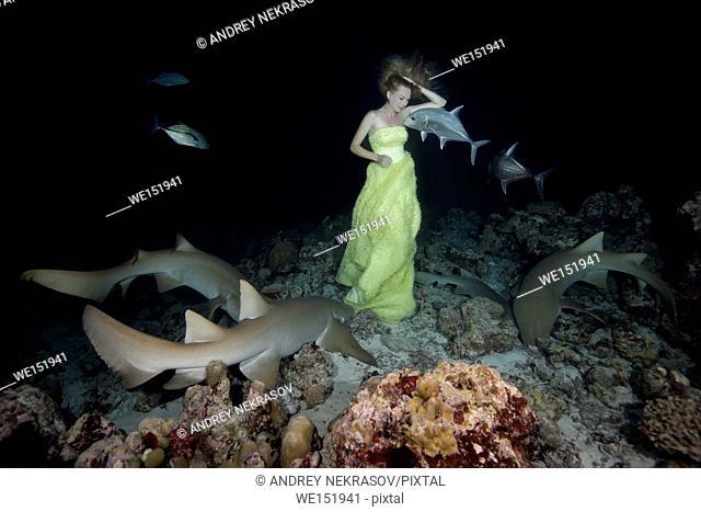 Young beautiful woman in yellow dress posing underwater with Tawny nurse sharks (Nebrius ferrugineus), night shooting, Indian Ocean, Maldives