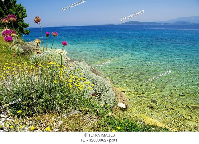 Turkey, Cesme, Izmir, Mediterranean coast