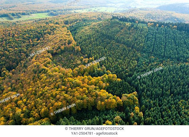 France, Bas Rhin 67, Natural Regional Park of Northern Vosges, Climbach, forest in autumn aerial view