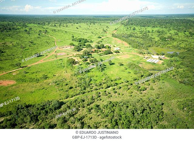 Mosaic with Area of Field and of Forest and Headquarters of Cacimba de Pedra Farm, Aquidauana, Mato Grosso do Sul, Brazil