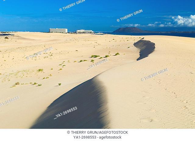 Spain, Canary islands, Fuerteventura, Las Dunas de Corralejo National park