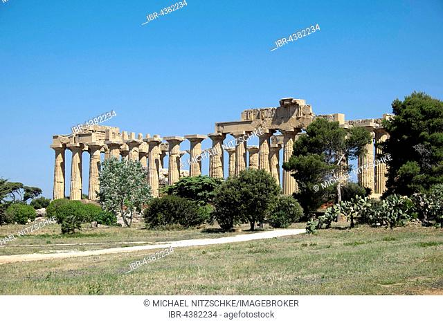 Greek ancient Temple E, Archaeological Park Selinunte, Selinunte, Sicily, Italy