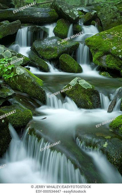 Cascading Water, Great Smoky Mtns National Park