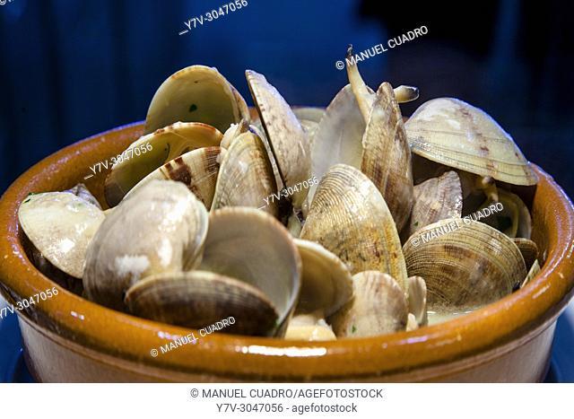 Plato de Almejas en salsa verde a la cazuela / Clams in green sauce. Basque Country, Spain