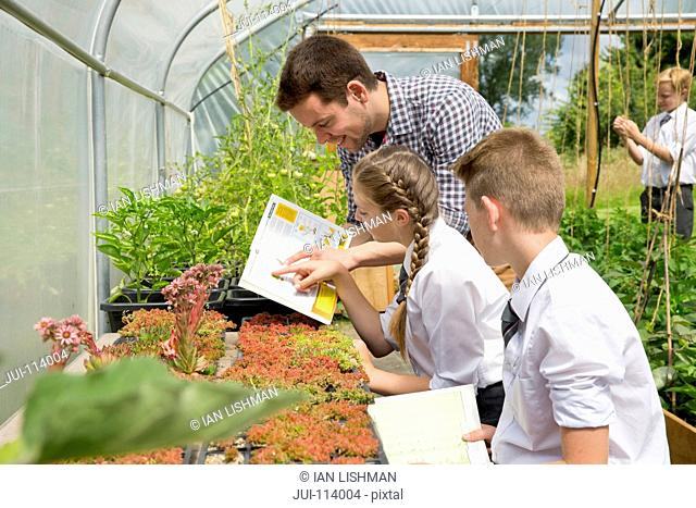 Teacher and middle school students with book learning gardening in sunny plant greenhouse
