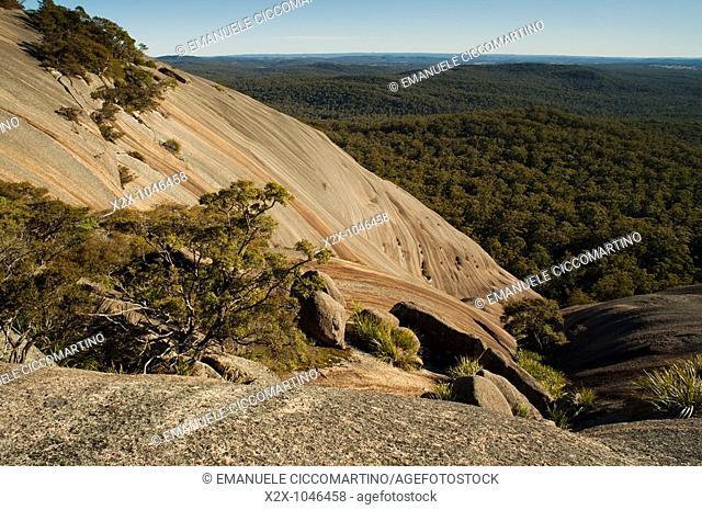 Bald Rock, Tenterfield, New South Wales, Australia