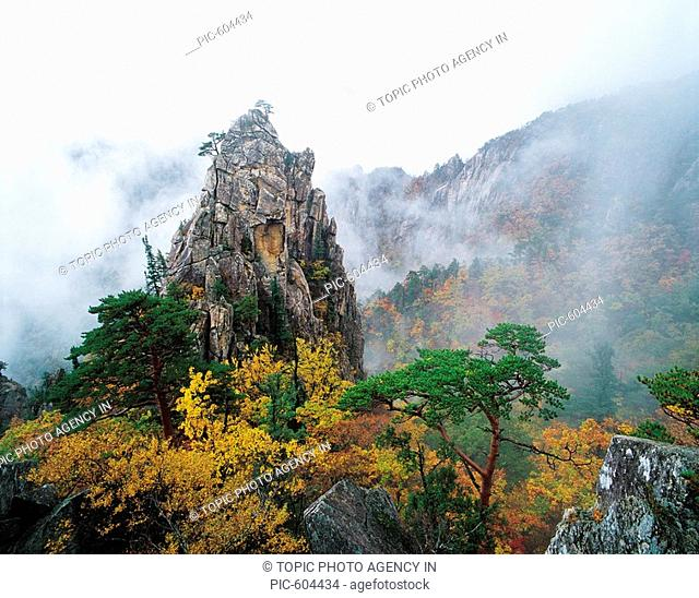 Mt. Seoraksan National Park,Gangwon,Korea