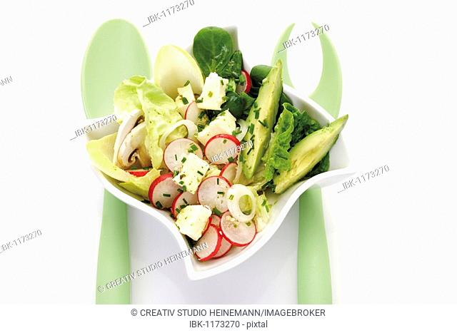 Mixed salad in a small porcelain bowl, feta cheese, feta cheese, avocados, lettuce, corn salad, chicory, onions, radishes, chives, salad servers